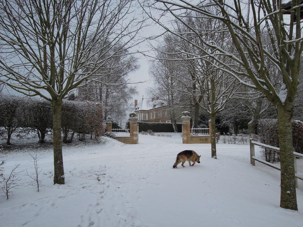 Villers castle in winter, 24-2-013 kopie